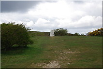 SZ0481 : Trig point on top of Ballard Down by N Chadwick