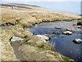 SH7944 : River Cliff on Afon Conwy by Chris Carlson