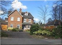 SU6351 : Newer housing - Cliddesden Road by Sandy B