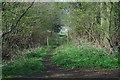 SJ5418 : Footpath at Bings Heath by Row17