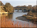 NT8440 : Bridge over the Tweed by Dave Pickersgill