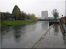 TA2609 : Wet Wednesday in Grimsby by David Wright