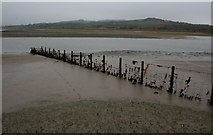 SD0894 : Fence in the Esk Estuary by Steve Partridge