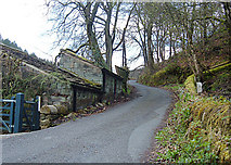 SD9923 : Lane to Higher House, Cragg Vale by michael ely