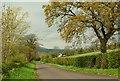 J4096 : The Ballyhone Road near Glenoe by Albert Bridge