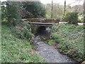 SJ6834 : Coal Brook downstream of Peatswood Lodge by John M