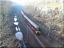 SE2336 : Railway cutting, Newlay looking west by Rich Tea