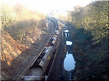SE2336 : Railway cutting, Newlay, looking east by Rich Tea