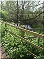 SJ7439 : River Tern downstream of Willoughbridge by John M