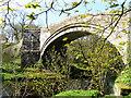NY5563 : Lanercost Bridge by mauldy