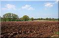 SJ5836 : Ploughed field near Heath Farm by Espresso Addict