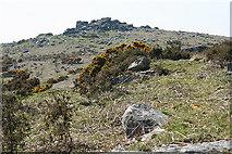 SX5373 : Dartmoor: Pew Tor by Martin Bodman