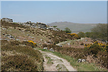SX5373 : Dartmoor: nearing Heckwood Tor by Martin Bodman