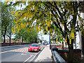 SJ9399 : Oldham Road, Ashton-under-Lyne by michael ely