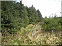 G8519 : Conifer plantations young and old on the slopes of Carrane Hill by Oliver Dixon