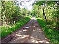 SN0314 : Brickfield Bridge, Slebech by Dylan Moore