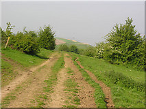 SE8924 : Public footpath west of Whitton by George Robinson