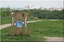 SJ6575 : Uplands Woodland by Alan Murray-Rust