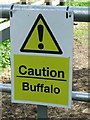 TF6511 : Caution Buffalo by Keith Evans