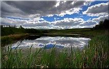 NX6592 : Loch on the B729 near Blackmark by Duncan McNaught