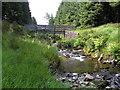 SN8487 : River Severn, Wooden footbridge (unnamed) by kevin skidmore