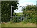 SP9330 : Public Footpath by Mr Biz