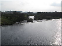 NY9170 : The River North Tyne southwest of Chollerford Bridge by Mike Quinn