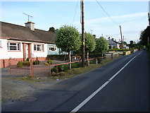 O0125 : Cottages Near Rathcoole by Ian Paterson