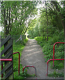 SE0125 : Cycle path alongside Mytholmroyd Station by Betty Longbottom