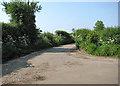 TG3624 : Sharp bend in Chapelfield Road by Evelyn Simak