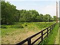 SO7351 : Waste ground near Lower Tundridge Farm 2008 by Peter Whatley