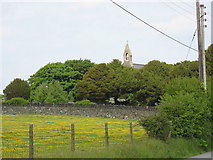 SH5968 : A buttercup meadow and the bell-cote of Eglwys y Santes Fair, Tregarth by Eric Jones