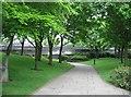 SP3378 : Urban Footpath by Sandy B