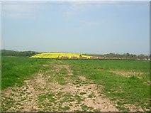 SE9742 : Farm track to Etton by DS Pugh