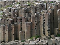 C9444 : Giant's Causeway [2] by Rossographer