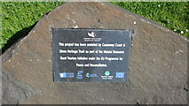 C9843 : Information sign by Willie Duffin