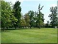 SU6449 : Hackwood Estate by Sandy B