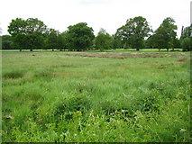 TQ0153 : Sutton Park by Nigel Cox