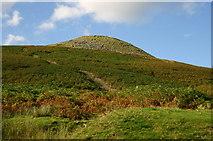 SO2220 : Table Mountain by Shaun Ferguson
