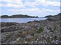NR7388 : Carsaig Island by E Gammie