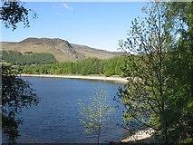 NN6557 : Loch Rannoch by Richard Webb
