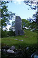R2897 : Newtown Castle - in ruins - Castletown Townland by Mac McCarron