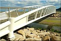 J3731 : Footbridge, Newcastle (2) by Albert Bridge