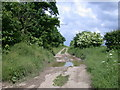 """TL4242 : Icknield Way """"Riders' Route"""" by Keith Edkins"""