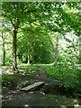 SE1427 : Path and plank bridge, Low Wood, North Bierley by Humphrey Bolton