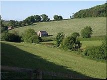 SX8663 : Valley below Marldon by Derek Harper