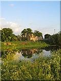 TL4279 : Houses on Bury Lane by Alison Rawson