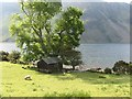 NY1606 : Wooden barn and tree on Wastwater shoreline by trevor willis