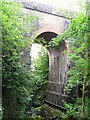 NY6366 : Railway viaduct over Poltross Burn by Mike Quinn