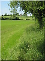 SO9556 : Bridleway to Hill Court, Grafton Flyford by Philip Halling
